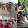蔡甸小学生出游好教练美丽生态园孩子都玩疯了推荐这里