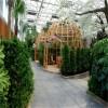 厂家直销 生态餐厅温室大棚 温室生态餐厅 农业生态餐厅