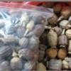 罂粟壳价格 生产厂家罂粟壳什么报价